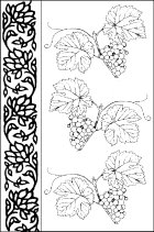 Pattern with Vine